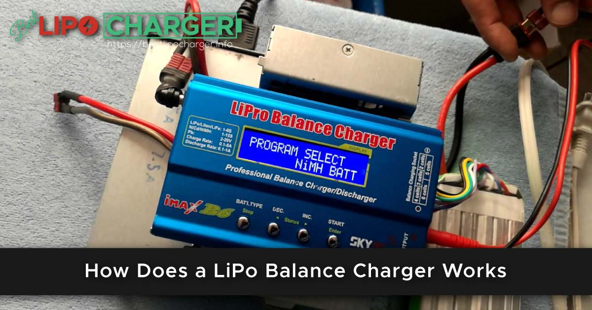 How Does a LiPo Balance Charger Works